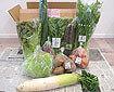 ビオマルシェの通販野菜セット