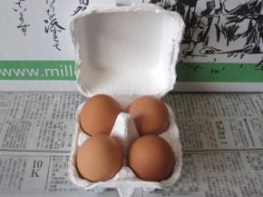 卵(無農薬野菜ミレー)