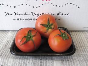 トマト(九州野菜王国)