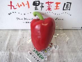 パプリカ 赤(九州野菜王国)
