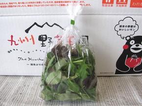 ベビーリーフ(九州野菜王国)