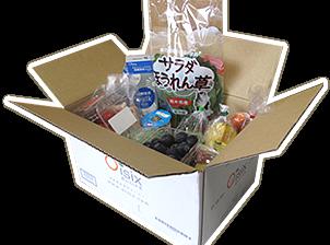 オイシックス(Oisix) 夏ウマ野菜入りお試しセット