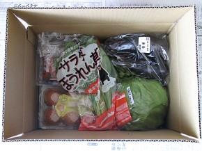 オイシックス(oisix)野菜の宅配お試しセット、上からの図