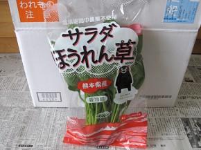 サラダほうれん草(オイシックス)
