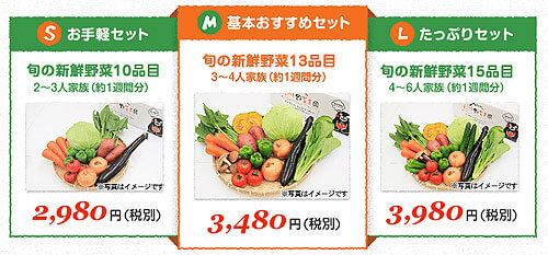九州野菜王国の野菜セット