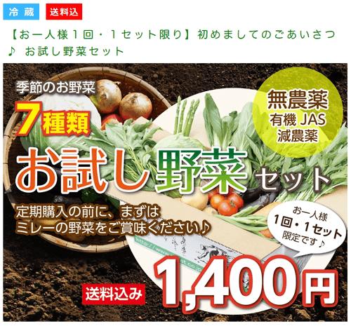無農薬野菜のミレー、お試し野菜セット