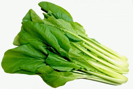 通販した小松菜の保存方法