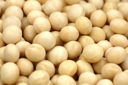 大豆の保存方法