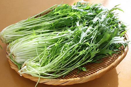 通販した水菜の保存方法