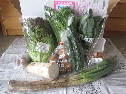 無農薬野菜のミレー、有機野菜セット