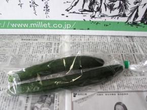 キュウリ(無農薬野菜ミレー)
