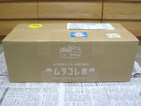 九州ムラコレ市場、田舎野菜Mセット