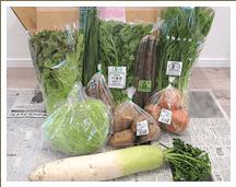 ビオマルシェの有機野菜セット