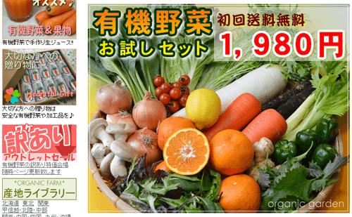 おーがにっくがーでん、有機野菜セット