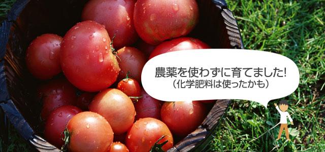 無農薬野菜について