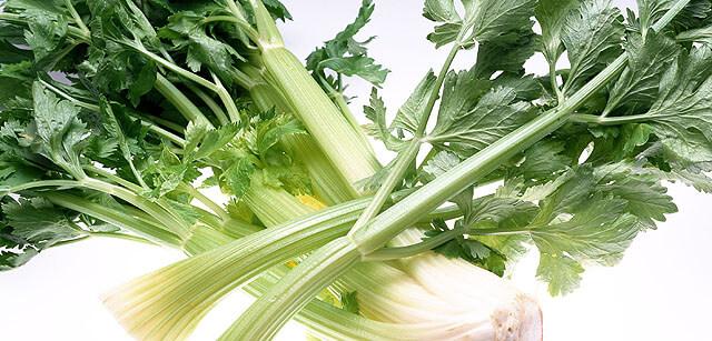 新鮮な野菜が手に入る