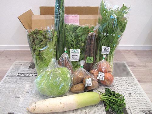 ビオマルシェの宅配、有機野菜セット
