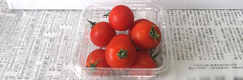 オイシックスのみつトマト