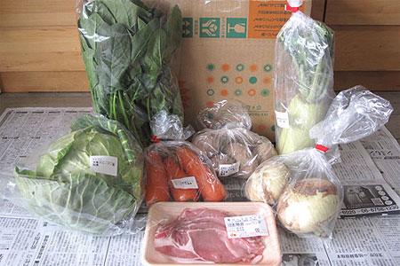 大地を守る会の通販、有機野菜セット