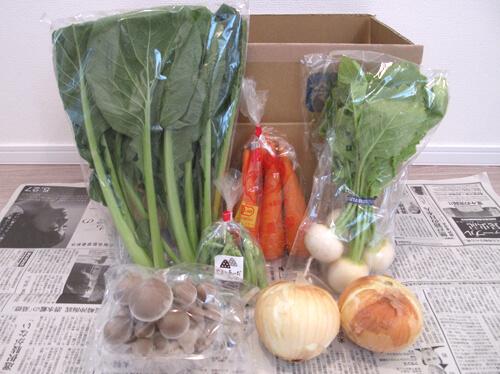 坂の途中の通販野菜
