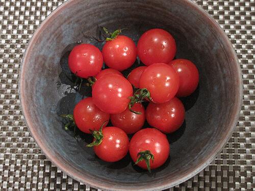 こくあまミニトマト